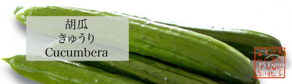 胡瓜 きゅうり (Cucumbera)