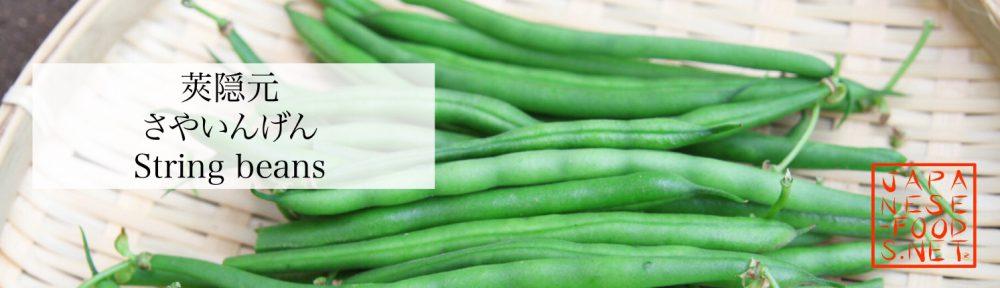莢隠元 さやいんげん(string beans)