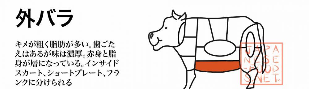 牛肉|外バラ|Short Plate