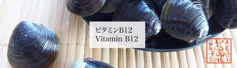 【栄養素】ビタミンB12(Vitamin B12)