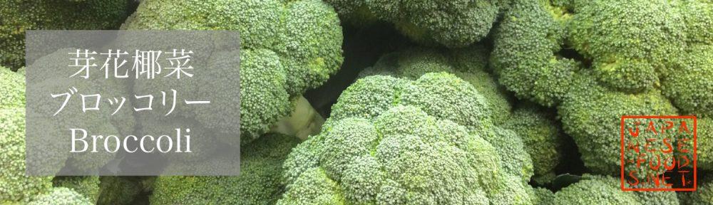 芽花椰菜 ブロッコリー(Broccoli)