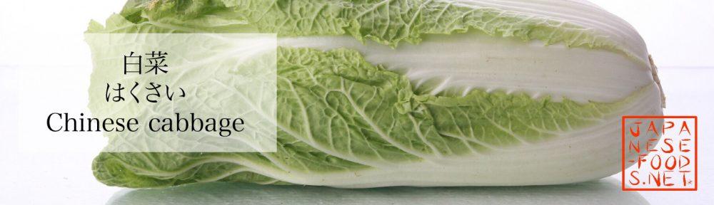 白菜 はくさい(Chinese cabbage)の特徴と栄養素