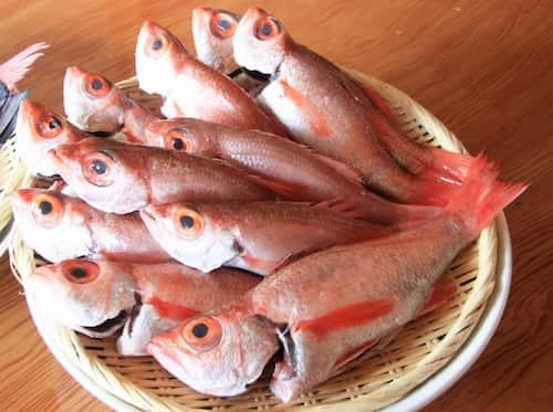 赤鯥 あかむつ(Blackthroat seaperch)