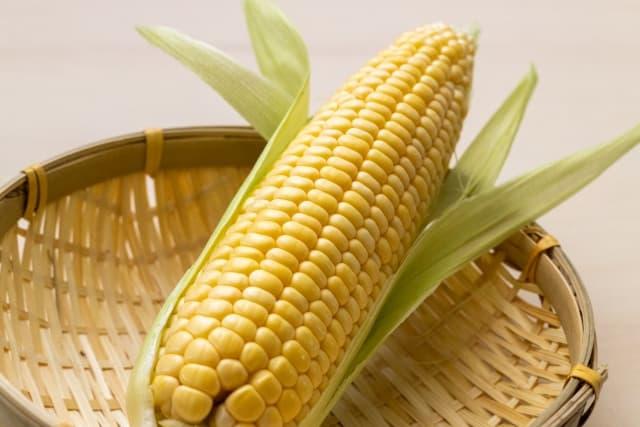 玉蜀黍 とうもろこし(sweetcorn)