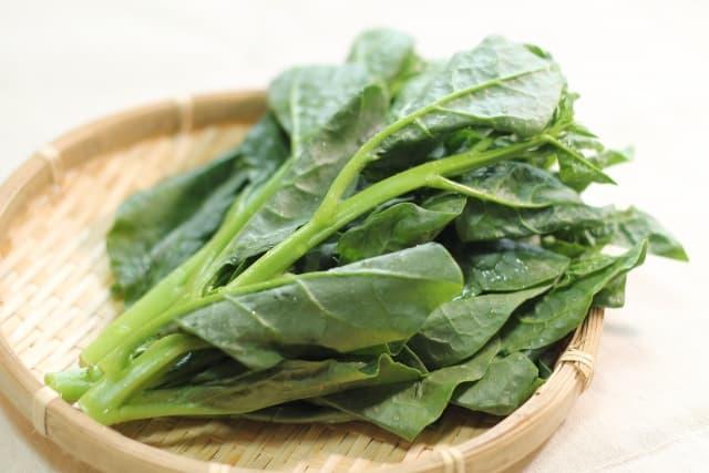 蔓紫 つるむらさき(Malabar spinach)