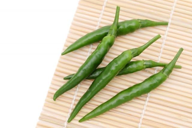 唐辛子 とうがらし(Red pepper)