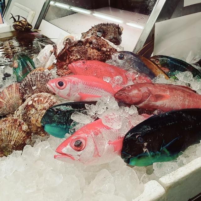 魚介類 英語 一覧