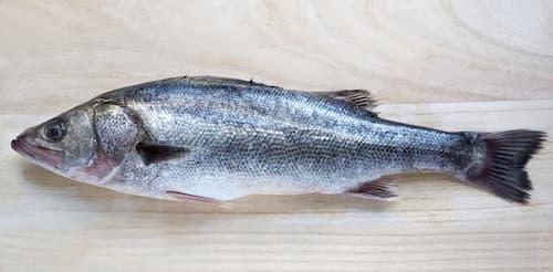 鱸 すずき(Sea bass)
