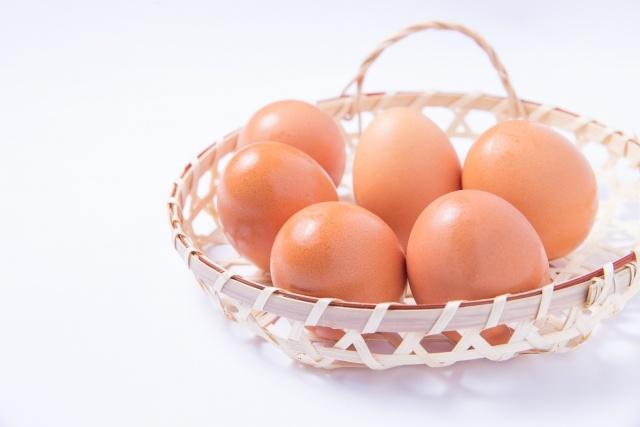 乳製品と卵の特徴