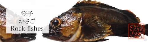 笠子 かさご (Rock fishes)