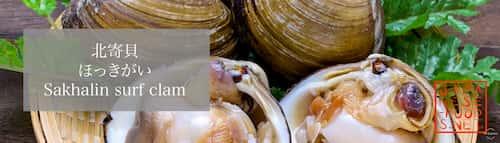 北寄貝 ほっきがい(Sakhalin surf clam)