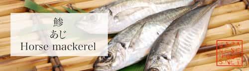 鯵 あじ(Horse mackerel)