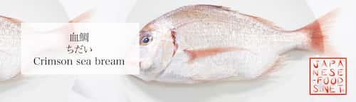血鯛 ちだい(Crimson sea bream)