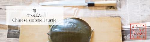 鼈 すっぽん(Chinese softshell turtle)