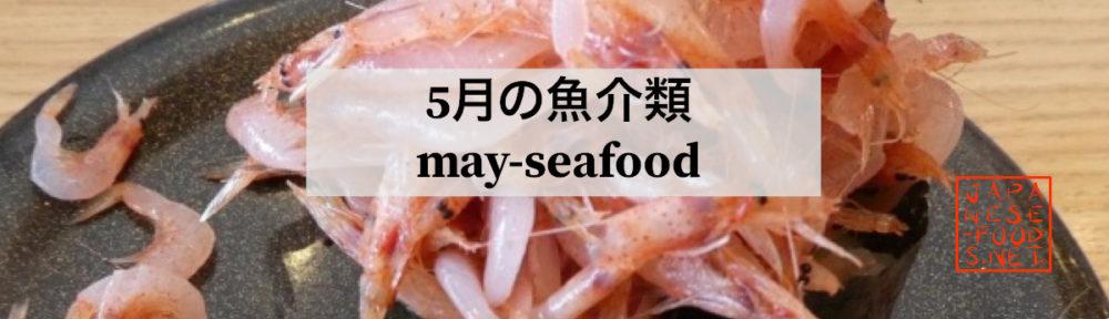 5月|旬の魚介類