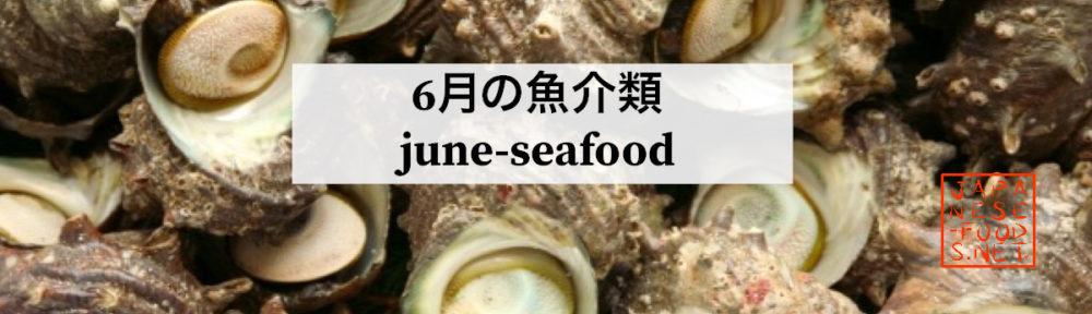 6月 旬の魚介類