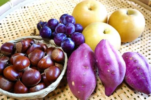 9月|旬の野菜と果物