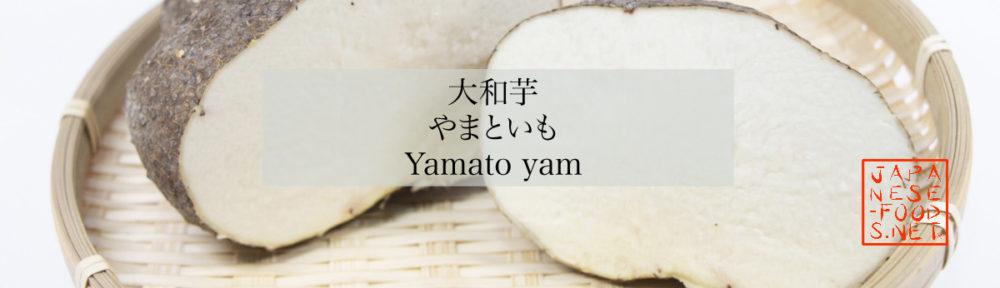 大和芋 やまといも(Yamato yam)