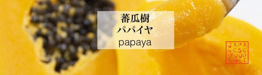 蕃瓜樹 パパイヤ(papaya)